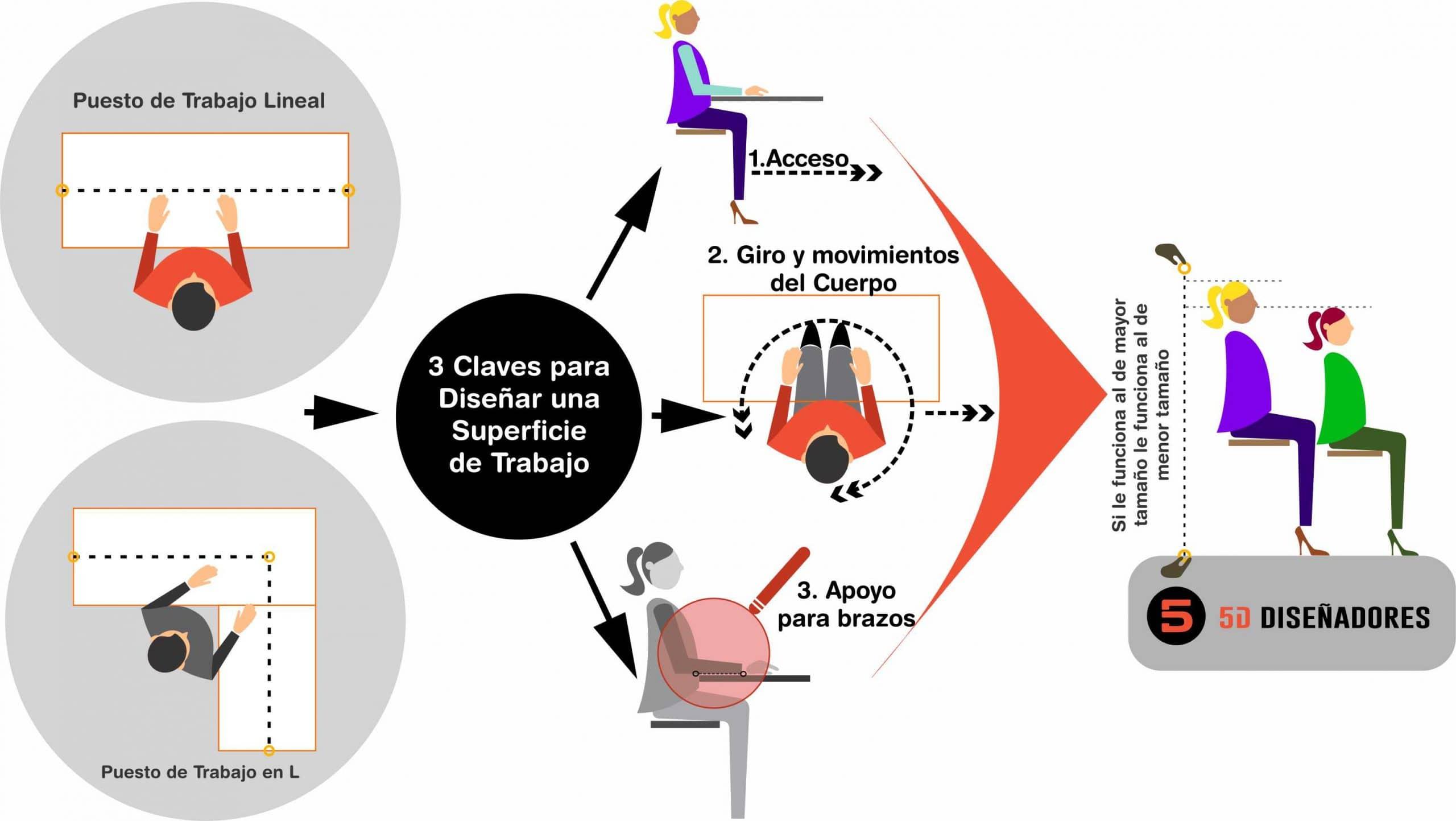Imagen de la ergonomía y antropometría aplicada a los espacios de trabajo